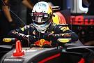 Ricciardo constate un écart