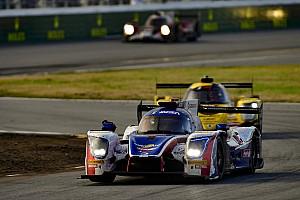 IMSA Nieuws Norris wil na Daytona ook Le Mans, maar niet ten koste van F1