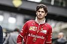 Alfa Romeo Sauber: чому не Джовінацці?