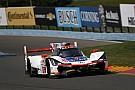 Watkins Glen IMSA:Cameron leads FP3, Rast shunts in Mazda