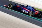 哈特利瞄准在墨尔本取得F1