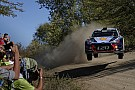 WRC Rallye Argentinien: Neuville entreißt Evans den 1. WRC-Sieg