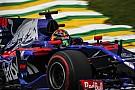 Hartley: Toro Rosso anlaşması haftalar önce imzalandı