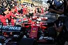 Sebastian Vettel, elegido 'Piloto del día' del GP de Australia