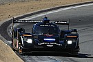IMSA Grande pole position di Ricky Taylor a Laguna Seca