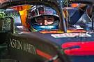 Формула 1 Веббер розповів про ситуацію з контрактом Ріккардо