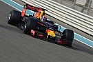 Formula 1 Pirelli mule car running hurt Red Bull in 2017, says Horner