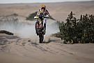 Dakar Espanhola atropela lhama, mas tem melhor colocação no Dakar