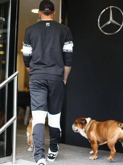 Льюіс Хемілтон, Mercedes AMG F1 W08, собаки Коко і Роско