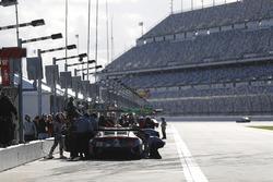 #86 Michael Shank Racing Acura NSX, GTD: Katherine Legge, Alvaro Parente, Trent Hindman, A.J. Allmendinger