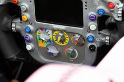 Sahara Force India VJM10 steering wheel detail
