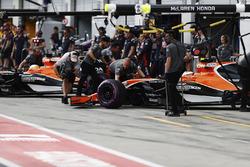 Fernando Alonso, McLaren MCL32, Stoffel Vandoorne, McLaren MCL32,