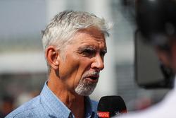 Damon Hill, Sky TV