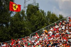 Du soutien pour Ferrari