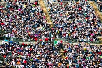 Fans cheer in the grandstands