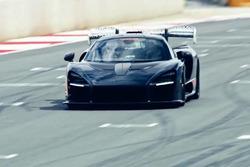 McLaren Senna en piste