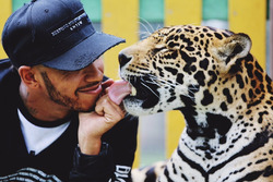 Lewis Hamilton com jaguar