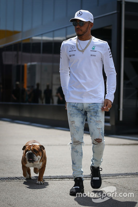 Lewis Hamilton, Mercedes AMG F1 con su perro Roscoe