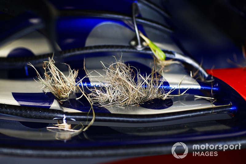 Grass in the front wing of the car of Pierre Gasly, Scuderia Toro Rosso STR13