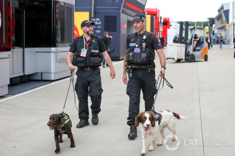 Поліція із собаками