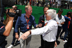 Martin Brundle, Sky TV ve Bernie Ecclestone