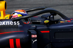 Max Verstappen, Red Bull Racing with halo