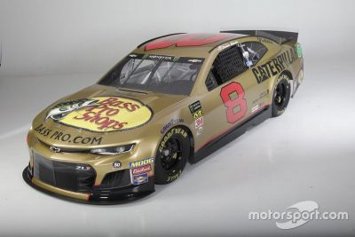 Richard Childress Racing paint scheme
