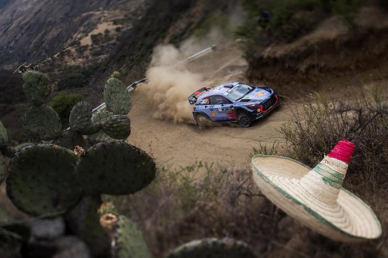 Thierry Neuville, Nicolas Gilsoul, Hyundai Motorsport, Hyundai i20 Coupe WRC
