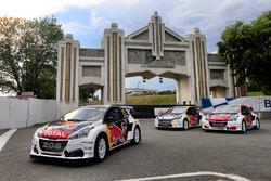 Team Peugeot Hansen, Peugeot 208 cars
