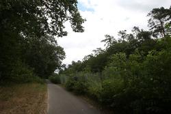 Un ciclopista junto a la ruta del circuito viejo
