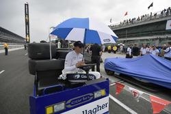 Max Chilton, Carlin Chevrolet durant une interruption à cause de la pluie