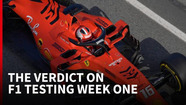 The verdict on the first F1 test