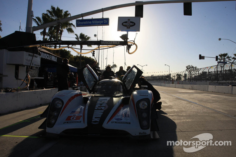 Muscle Milk AMR qualifying report