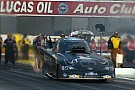 Alexis DeJoria hopes for continued success at second event of 2014 NHRA season