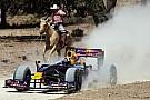 Coulthard dà spettacolo ad Austin con la Red Bull