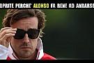 Alonso, quali sono le ragioni dell'addio dalla Ferrari?