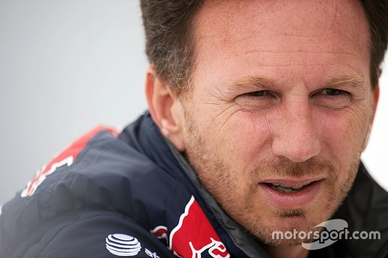 Horner refutes Ricciardo's chassis claims