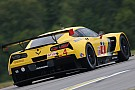 GT Le Mans, 2016: Corvette's Doug Fehan talks about the changes