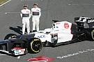 Kobayashi ve Perez'in C31 hakkında ilk açıklamaları