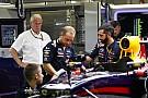 A Lotus volt a Renault titkos kedvence - a Red Bull nem fújja fel a Vettel vs. Ricciardo kérdést