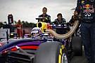 Ricciardo: Nyertem! Egész éjszaka bulizni fogok, méghozzá keményen!