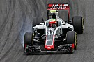 Esteban Gutierrez: Formel E statt Formel 1