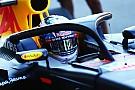 Formel 1 bleibt dabei: Cockpitschutz Halo kommt 2018