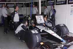 Minardi's garage: Tarso Marques