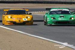 Corvette Racing Chevrolet Corvette C5-R and Team Olive Garden Ferrari 550 Maranello