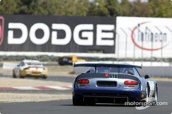 la Dodge Viper GTS-R n°71 de l'équipe Carsport America pilotée par Jean-Phillippe Belloc, Aaron Povoledo