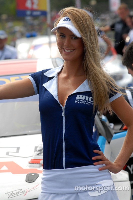 Stefano D'Aste's gridgirl