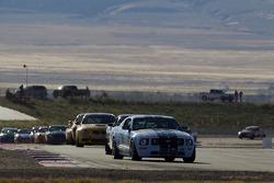 #19 Long Road Racing Ford Mustang GT: Brad Adams, Steve Phillips