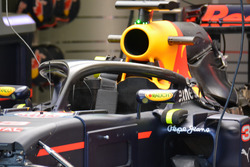 Red Bull Racing Halo