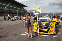 Grid kızı, Gordon Shedden, Halfords Yuasa Racing